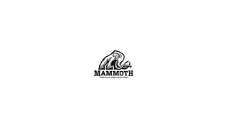 Mammoth Energy Services reports